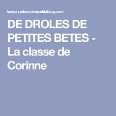 DE DROLES DE PETITES BETES - La classe de Corinne