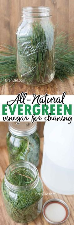 Evergreen scented vinegar for cleaning can be made with just two simple ingredients: vinegar and fresh evergreens.