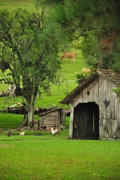 This reminds me of my Grandmother and Grandaddy's place when I was a child.cg