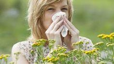 sapereconsapore: Allergia ai pollini: prevenzione, consigli e   rim...