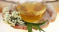 preparar chás medicinais