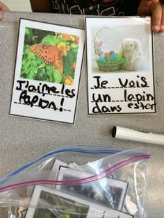 Great for Daily 5 in French Immersion! Use the image to write a sentence. Education And Literacy, Inquiry Based Learning, Literacy Centers, French Education, French Teacher, Teaching French, French Lessons, Spanish Lessons, French Flashcards