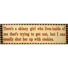 Tin Wall Sign - Skinny Girl