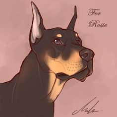 Rosie & # s Dobermann von Malta - Dessin - Cute Dog Drawing, Cute Animal Drawings, Animal Sketches, Art Drawings Sketches, Scary Drawings, Dog Illustration, Deviantart, Pics Art, Furry Art