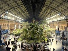 """The Old Atocha Rail Terminal,   Photograph by Krista Rossow,   """"The old Atocha rail terminal building was converted into a concourse with shops and eateries, with trains served by a new terminal nearby."""""""