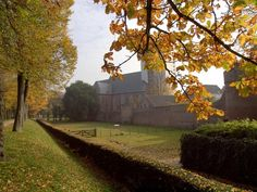Nature in Elburg, Netherlands (autumn) - a photo by Koos Schoonhoven