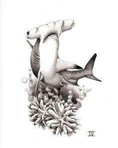 https://www.google.com/search?q=shark tattoos