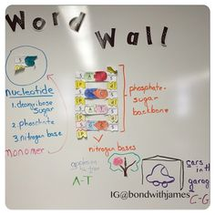 A #wordwall covering #DNA. #biology #science High School Biology, High School Science, Curriculum, Homeschool, General Biology, Life Code, Dna Replication, Biology Classroom, Mitosis