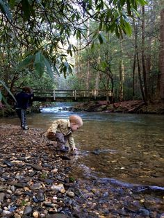 Smithgall Woods State Park - Helen, GA - Kid friendly activity reviews - Trekaroo