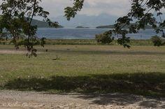 """""""El Lago"""" Fotografía tomada en Magdaleno, Estado Aragua, Venezuela. 2009"""