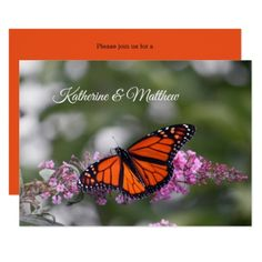 Monarch Butterfly 9740 Wedding Invitation - black gifts unique cool diy customize personalize