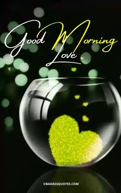 Good Morning Love Pics, Good Morning Video Songs, Good Morning Romantic, Good Morning Beautiful Pictures, Good Morning Quotes For Him, Good Morning Images Flowers, Morning Pictures, Good Morning Wishes, Morning Pics