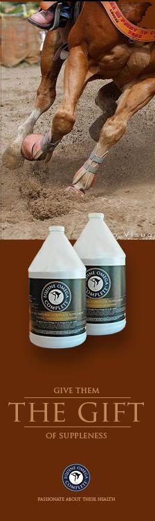 How supple is your barrel horse? DHA and EPA Omega 3s, especially when combined, can greatly reduce inflammation. Both are among Mother Nature's most potent anti-inflammatories. See why so many barrel racers are raving about this outstanding supplement. $59.95 per month Testimonials - www.03animalhealth.com
