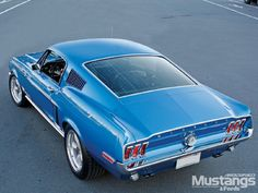 1968 1/2 Mustang Cobra Jet.