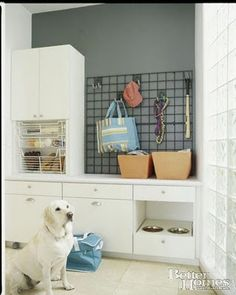 wow an entire area for all your dogs' stuff awesome, could really go in the laundry room. Love it.