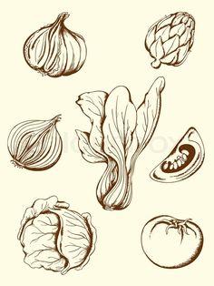Stock-Vektor von 'Set von Hand gezeichnet vector vintage Gemüse icons'