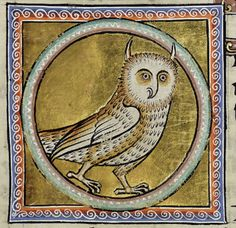 Symbolism of the owl, medieval symboilism and beastiaries on the owl, owl symbol of illuminati and Freemasonry Aberdeen, Medieval Drawings, Medieval Art, Medieval Manuscript, Illuminated Manuscript, Lion And Lamb, Horned Owl, Owl Art, Ancient Art