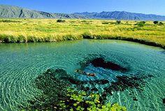 Lagunas.. de Mexico