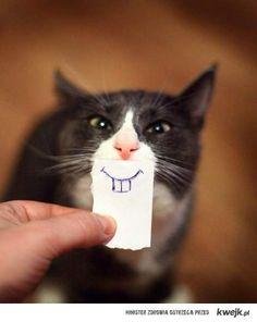 hahahahaha!! Can't stop laughing!! Hahahahahahahahahahahahahahahaha!!!