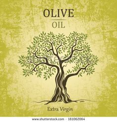 Olive tree on vintage paper. Olive oil. Vector olive tree. For labels, pack. by BrSav, via Shutterstock