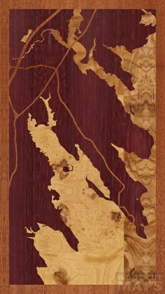 """Dramatic 9""""x16"""" Woodcut Map of Marion"""