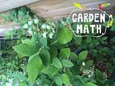 Fun garden math activities for kids. Get the little ones involved in gardening!