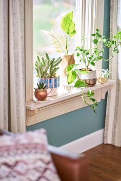 A windowsill is the perfect spot for a mini garden - an opportunity to add life and a sense of outdoors to a space and to show off pretty, colorful containers.
