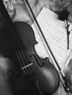 #violinphotography #vintage #bw #blackandwhite #rose #bow #silk #lace #wallpaper ©vbphotography