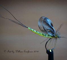 little mayfly size 15 #flyfishing #flytying #flugbindning #flugfiske #fliegenbinden #fliegenfischen #tyingflies #troutflies #flyfish #flyfishingjunkie #flyfishingnation #flydressing #flytyingaddict #flytyingporn #perhokalastus #flylords #troutfood #troutbum #mayflymafia #fishingflies #pescamosca #motajedemosca #torrfluga #dryfly #dryflyfishing #grayling #trout #whitingfarms