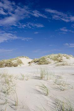 Dünenlandschaft am Ostland wurde in Deutschland, Borkum aufgenommen und hat folgende Stichwörter: Düne,  Borkum,  Ostland.