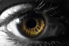 Eye Picture - 35 Emotional Eye Pictures  <3 <3