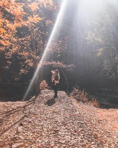 Railroad Tracks, Sunlight, Greece, Good Things, Instagram, Greece Country, Nikko, Train Tracks