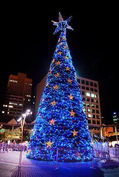 Christmas in Brisbane, Australia