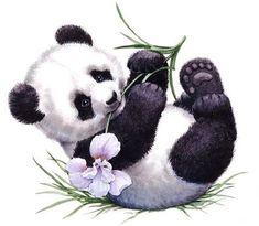 Baby panda bears, baby animals, animals and pets, cute animals, cute Niedlicher Panda, Panda Bebe, Panda Art, Animals And Pets, Baby Animals, Cute Animals, Wild Animals, Cute Animal Drawings, Cute Drawings