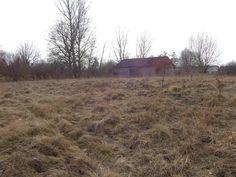 DZIAŁKA siedliskowa ZABUDOWANA, 9300 m2, Żochowo
