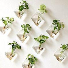 6.74AUD - Natural Wall Hanging Plant Terrarium Glass Planter Diamond Baskets Pots On Sell #ebay #Home & Garden