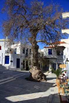 Pyrgos Tinos Greece, Athens Airport, Greek Life, Macedonia, Greek Islands, Mykonos, Cathedral, Places To Visit, Around The Worlds