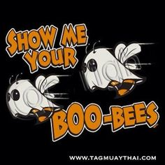 show me your boo-bees Halloween Quotes, Halloween Shirt, Halloween Fun, Halloween Humor, Adult Dirty Jokes, Adult Humor, Funny Signs, Funny Memes, Flirty Quotes