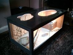 Bearded Dragon Coffee Table - Reptile Forums