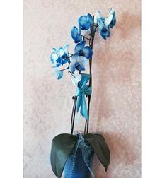 Who's Sending Adrienne Maloof Flowers
