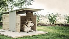 Puphaus: A Modern Dog House from Pyramd Design Co.