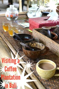 A Visit to a Bali Coffee Plantation