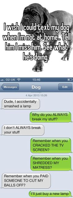 dog texting  // funny pictures - funny photos - funny images - funny pics - funny quotes - #lol #humor #funnypictures