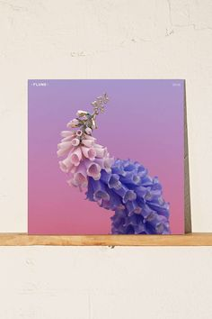 Vinyl: Flume - Skin