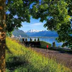 Stamp #706 - Switzerland : The perfect Swiss town? Head to Montreux!  Located between Lake Geneva and the foothills of the Swiss Alps Montreaux is a picture perfect Swiss town. With mountain huts and picturesque trails of Hauts de Montreux it's the perfect place for nature enthusiasts. Stop by for delicious food amazing views and the best hiking trails!  Thank you @growingupwithoutborders for your #ShareYourStamp!!  For more awesome #travel and #wanderlust tips and #adventure download the…