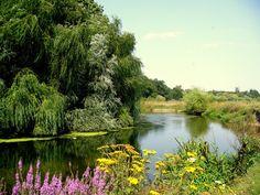 Neajlov, a river in the South Romanian Plain.  Near Comana, Giurgiu County.