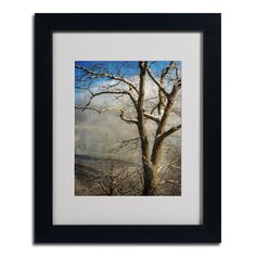 Lois Bryan 'Tree In Winter' Framed Matted Art (11 x 14 Wood Frame)