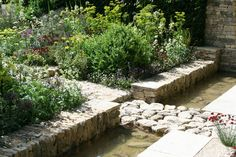 The Daily Telegraph Garden by garden designer Cleve West Chelsea Flower Show 2011