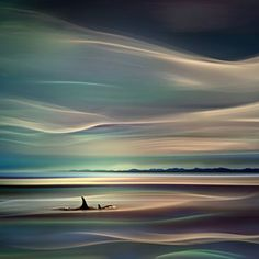 Orcas by Ursula Abresch Orcas Island is the largest of the San Juan Islands, which are located in the northwestern corner of Washington state in San Juan County, Washington, USA.
