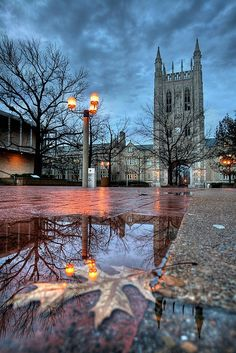 MU campus in Columbia, MO... The town where I grew up and went to school